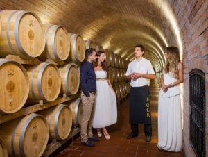 Visits to the Bock Cellar