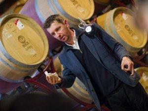 Pincelátogatással egybekötött hordós borkóstoló a Bock Pincében (10:00-11:00)